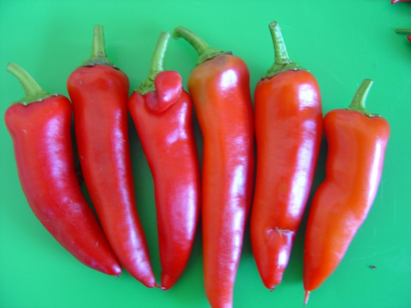 hungarian hot wax chillis