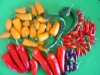 another great harvest of bolivian rainbow chillis, santa fe grande chillis, whippets tail and hugarian hot wax
