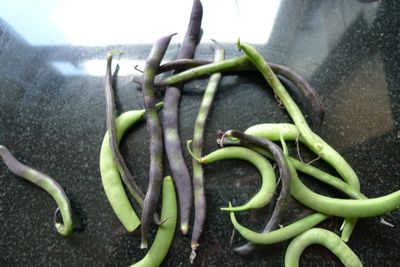 Purple beans and dwarf beans