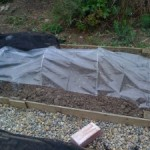Bargain Poly Tunnel