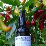 Ring of Fire Chilli Beer