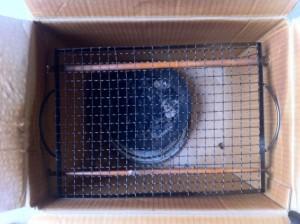 Cardboard box smoker wtih rack